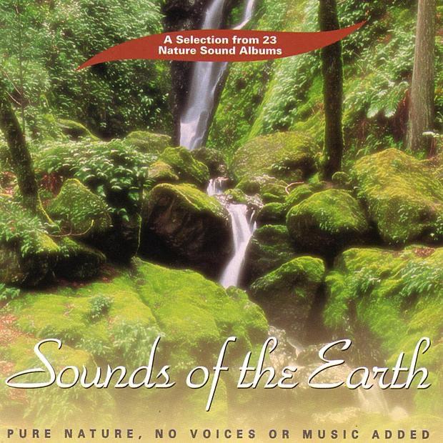 Jungle Sounds by Ambient Nature Sounds