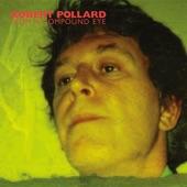 Robert Pollard - U.S. Mustard Company