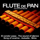 Les plus grands succés de la flûte de Pan aux synthétiseurs - EP