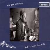 9 Big Joe Williams Sloppy Drunk Blues