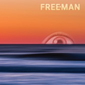 Freeman - The English and Western Stallion