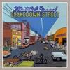 Shakedown Street ジャケット写真