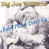 Big Joe Williams - So Soon Ill Be Goin Away