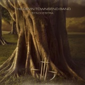 The Devin Townsend Band - Vampira