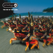 The Fat of the Land (Expanded Edition) - The Prodigy - The Prodigy
