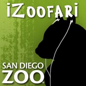 iZoofari Audio Tours at the San Diego Zoo