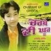Charkhe Di Ghook