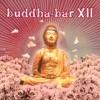 Buddha Bar XII, Buddha Bar