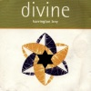Divine ジャケット写真
