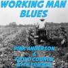 Working Man Blues Pink Anderson & Floyd Council with Friends