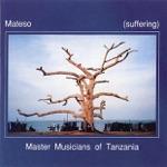 Hukwe Zawose & Master Musicians of Tanzania - Chisango