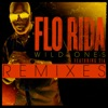 Wild Ones (Remixes) [feat. Sia] - EP, Flo Rida
