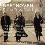 "Gould Piano Trio - Piano Trio No. 5 in D Major, Op. 70, No. 1, ""Ghost"": I. Allegro vivace e con brio"
