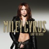 Miley Cyrus - Cant Be Tamed Album