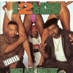 The 2 Live Crew - Shake a Lil' Somethin'