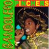 Pinchers - Pretending artwork
