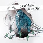 Lost Bayou Ramblers - Carolina Blues