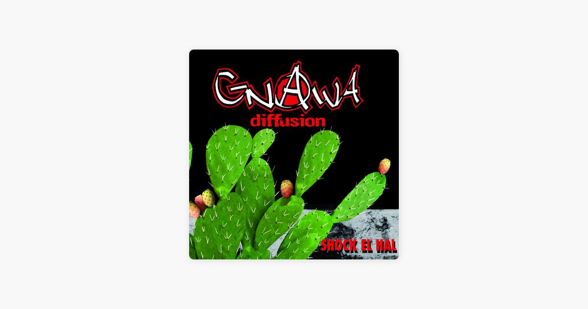 gnawa diffusion album shock el hal