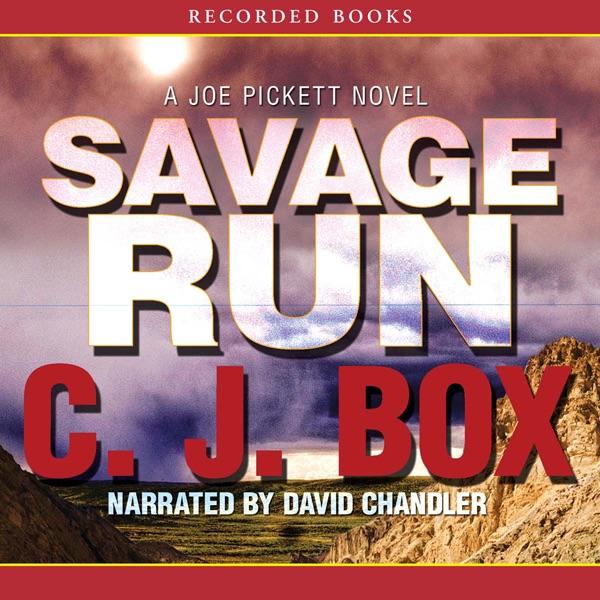A Joe Pickett Novel: Vicious Circle 17 by C. J. Box (2017, Hardcover)5