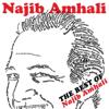 The Best Of - Najib Amhali