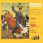 Parquet Courts - Careers in Combat