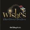 Walt Disney World Wishes - A Magical Gathering of Disney Dreams - Disney World Attraction