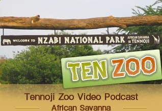 TEN ZOO Tennoji Zoo Video Podcast English Ver.