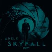 Skyfall - Single