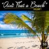 Ain't That a Beach, Vol. 1