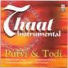 Thaat Instrumental - Purvi & Todi