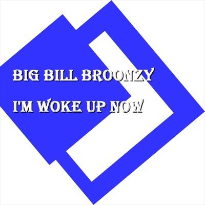 I'm Woke Up Now - Big Bill Broonzy