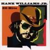 Hank Williams Jr.: 20 Hits