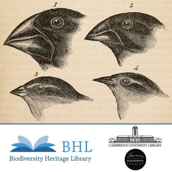 Charles Darwin's Library: Selections