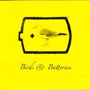 Birds & Batteries - Code Orange