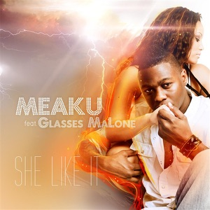 She Like It (Radio) [feat. Glasses Malone] - Single Mp3 Download