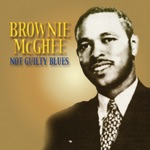 Brownie McGhee - Dealing With the Devil