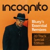 Bluey's Essential Remixes - 20 Track Special Edition ジャケット写真