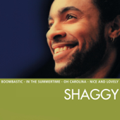 Boombastic Sting Remix  Shaggy - Shaggy