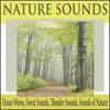 Wind Sounds - Robbins Island Music Group