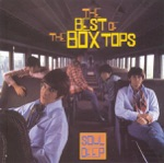 The Box Tops - I See Only Sunshine