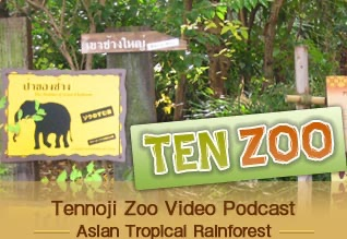 TEN ZOO 'Tennoji Zoo Video Podcast' English Ver.