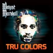 Wayne Marshall - On the Corner