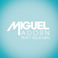 Adorn (Remix) [feat. Wiz Khalifa] - Single Mp3 Download