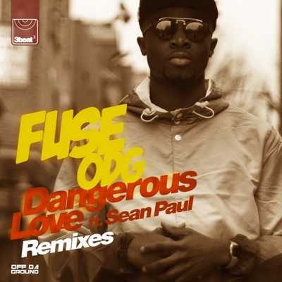 Dangerous Love (feat. Sean Paul) [Remixes] - EP MP3 Download