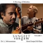 Raga Charukeshi: Alaap and Tanam / Jod