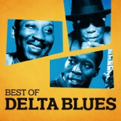 The Johnny Shines Blues Band - Dynaflow Blues