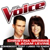 Somebody That I Used To Know The Voice Performance Single