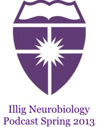 Illig Neurobiology Spring 2013