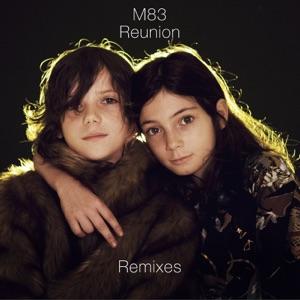 Reunion (Remixes)