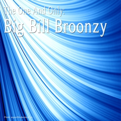 The One and Only: Big Bill Broonzy - Big Bill Broonzy
